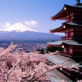 1000 Cơ Hội Học Tiếng Nhật Tại Eduvietjap 30 Buổi
