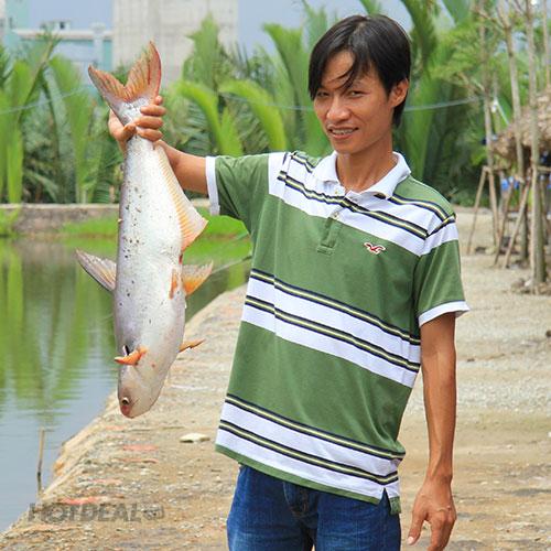 Câu Cá Không Giới Hạn + Được Mang Cá Về + 01 Trong 04 Set Menu