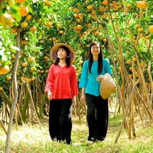 Tour Miệt Vườn Sông Nước Miền Tây: Cái Bè – Cần Thơ 2N1Đ tại Hồ Chí Minh