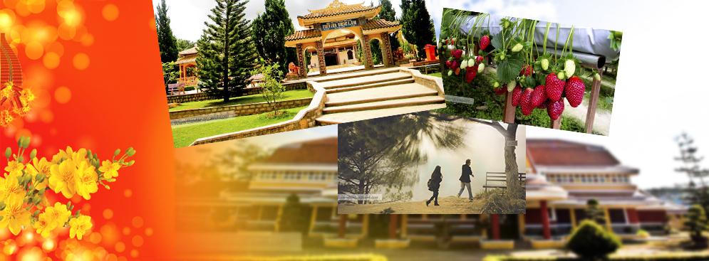Tour Tết Ất Mùi –Ninh Chữ Đà Lạt 4N4Đ KS 2*