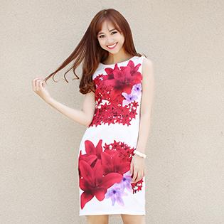 Đầm In Họa Tiết Cao Cấp HD03-BST Hè 2015
