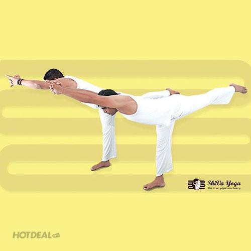 24 Buổi Tập Yoga Chuẩn Quốc Tế, Giáo Viên Ấn Độ Tại Shiva Yoga