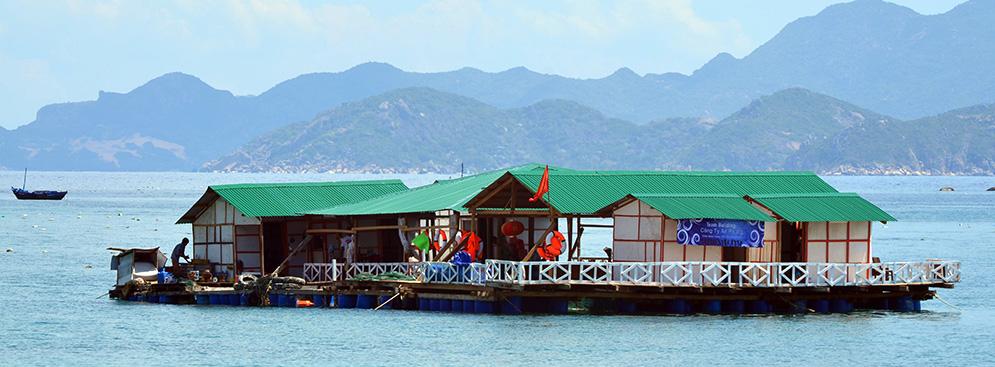 Tour Bình Hưng – BBQ Hải Sản  2N2Đ