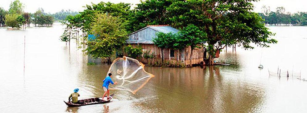 Tour Sài Gòn - Gáo Giồng Tràm Chim 2N1Đ Cho 1 Người
