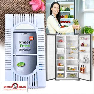 Miếng Khử Mùi Tủ Lạnh Than Hoạt Tính UBL tại Hồ Chí Minh