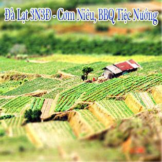 Tour Đà Lạt BBQ – Lửa Trại Cồng Chiêng 3N3Đ