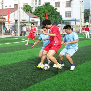 Dịch Vụ Cho Thuê Sân Bóng Đá Tại Sân Bóng Phi Trường tại Hồ Chí Minh