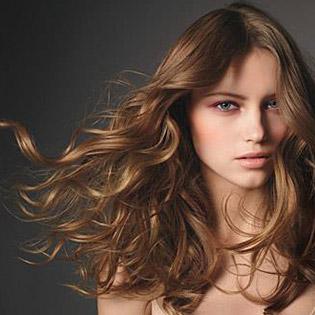 My Trang Hair Salon - Dịch Vụ: Cắt, Gội, Hấp Phục Hồi, Nhuộm Các Màu, Mặt Nạ Vàng Collagen Nguyên Chất, Sấy
