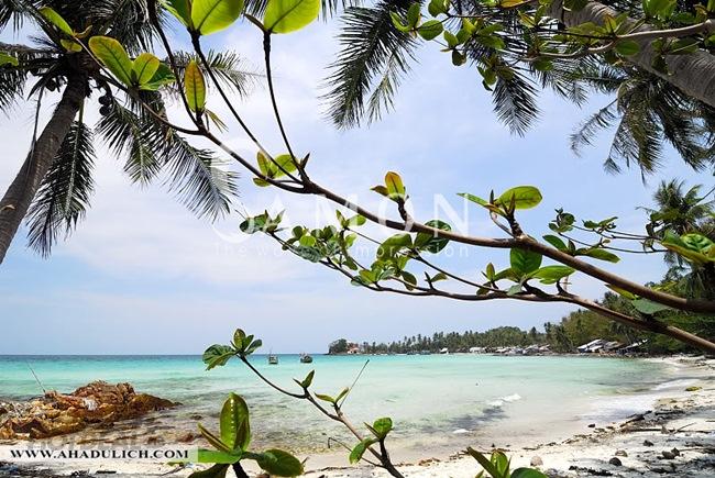 Tour Đảo Nam Du Huyền Bí – BBQ Hải Sản 2N2Đ - Khởi Hành Hàng Ngày
