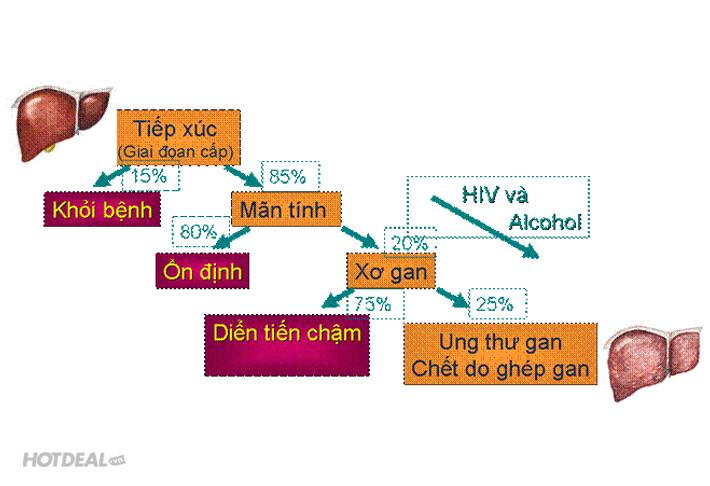 Trọn Gói Khám Viêm Gan Do Bia Rượu – Nhiễm Độc Tại PK Nhân Mã
